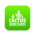 home cactus plants icon green vector image vector image