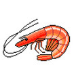 pixel shrimp seafood detailed isolated vector image
