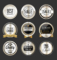 premium and luxury silver and black retro badges vector image vector image