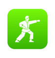 aikido fighter icon digital green vector image
