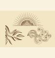 creative curls floral ornament art design set vector image vector image