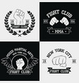 fight club graphics for t-shirt set vector image vector image