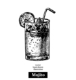Hand drawn sketch cocktail mojito vintage isolated vector image vector image