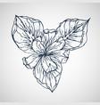 iris hand drawn vector image vector image