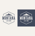 montana state textured vintage t-shirt and vector image vector image