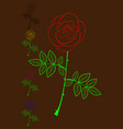 rose color set vector image