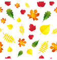 seamless autumn leaves pattern isolated on white vector image vector image