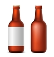 Bottle beer vector image vector image