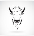 buffalo head design on white background wild vector image vector image