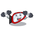 fitness side mirror isolated with the character vector image vector image