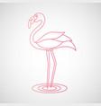 flamingo logo vector image vector image