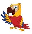 Macaw bird cartoon waving vector image vector image