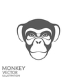 Monkey Chimpanzee vector image vector image