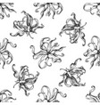 seamless pattern with black and white ylang-ylang vector image vector image