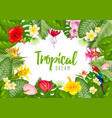 summer tropical frame design vector image vector image