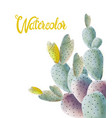 watercolor cactus flowers in different colors vector image vector image