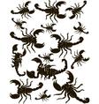 Set Scorpions Silhouette vector image