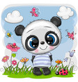 cute cartoon bapanda on a meadow vector image vector image