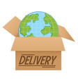 globe in box delivery vector image