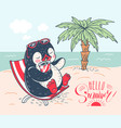 penguin on the beach vector image