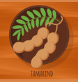 tamarind flat design icon vector image vector image