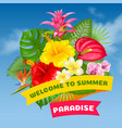 welcome to summer paradise vector image vector image