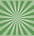 green sunburst vector image vector image