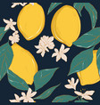 lemon on navy contrast background hand-drawn vector image