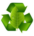 recycle symbol with leaf vector image vector image
