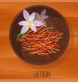 saffron flat design icon vector image vector image