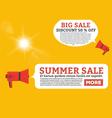 Summer offer flat loudspeaker vector image vector image
