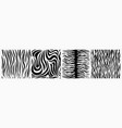 textural white black camouflage graphic lines vector image vector image