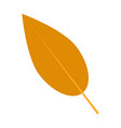 willow autumn leaf icon flat style vector image vector image