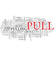 pull word cloud concept vector image