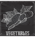 chalk drawing of cucumbers vector image
