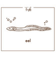 eel sketch fish icon or conger vector image vector image