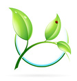 Green sprout with leaves vector image vector image
