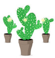 mexican set of cactus cartoon style vector image