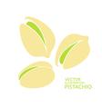 Pistachio vector image vector image