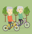 senior couple riding on bicycles in the park vector image vector image
