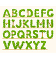 Stylized font of green leaves vector image