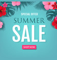 summer sale special offer poster vector image vector image