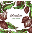 cacao frame template nature vector image
