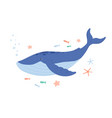 cute blue whale swimming among starfishes and vector image