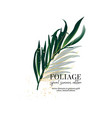 exotic foliage floral decoration with golden vector image
