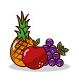 fruit pineapplee grapes apple harvest vector image vector image
