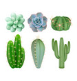 green cactuses realistic indoor botanical vector image vector image