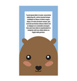 hamster head book cover design vector image vector image