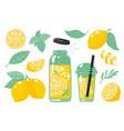hand drawn yellow lemon summer cold lemonade vector image vector image