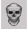human skull hand drawn jolly roger sketch death vector image vector image